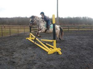 Keezlenutten Farm Riding Lessons
